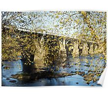 Gervais Street Bridge in Autumn Poster