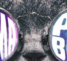 Gamma Phi Beta Cat Galaxy Sticker