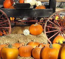 Rustic Pumpkins by Dea Liang