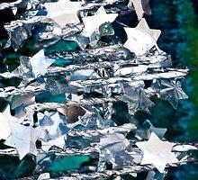 Silver Star Christmas Tree by Renee Hubbard Fine Art Photography