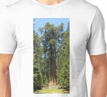 The Largest Tree in the World - GigaPan Unisex T-Shirt