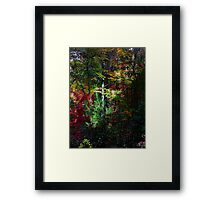 First Morning Light and Color Framed Print