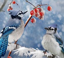 Blue Jay Greeting Card by Debbie  Fontaine