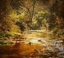 Autumn at Peterson Creek by KBritt
