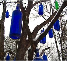 Up the Blue Bottle Tree by J. David Peterson
