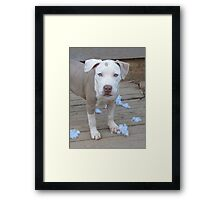 What Toy? Framed Print