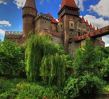 Vajdahunyadi vár IV (castle) by zumi
