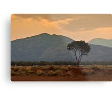 Amata - a dusty sunset Metal Print