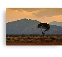 Amata - a dusty sunset Canvas Print