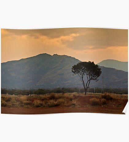 Amata - a dusty sunset Poster