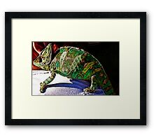 Who can be more colorful Framed Print