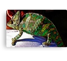 Who can be more colorful Canvas Print