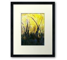 Whick Wheat Framed Print