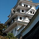 Japanese castle by fab2can