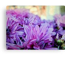 A Blanket of Royalty Canvas Print