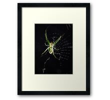 ©NS On The Web Tonight IA. Framed Print
