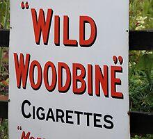 """""""Wild Woodbine"""" by JEZ22"""