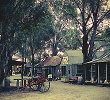 Australian Pioneer Village, Wilberforce by yolanda