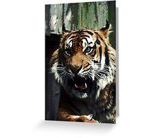Posterized tiger Greeting Card
