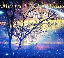Merry Christmas 2011 by SharonD