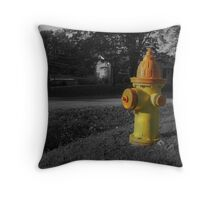 K9 Magnet Throw Pillow