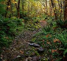 The Old Gold Trail by Charles & Patricia   Harkins ~ Picture Oregon