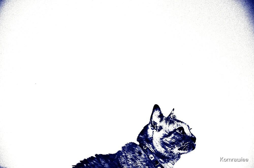 Gato posed... by Kornrawiee