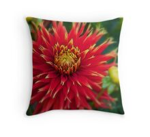 Canada. Vancouver Island. Butchart Gardens. Flower. Throw Pillow