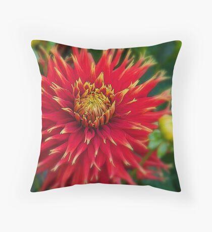 Canada. Vancouver Island. Butchart Gardens. Flower. Throw Pillow