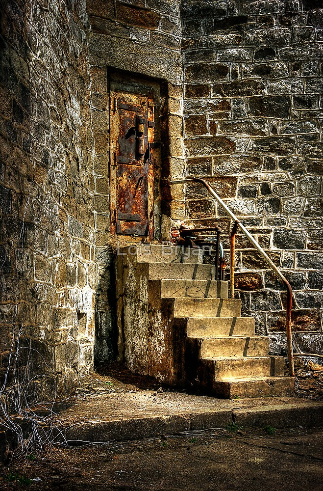 The Locked Door by Lois  Bryan