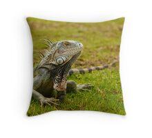 Caribbean Island Iguana Throw Pillow