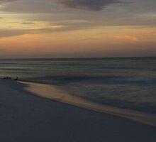 Morning Light by Cynthia Broomfield