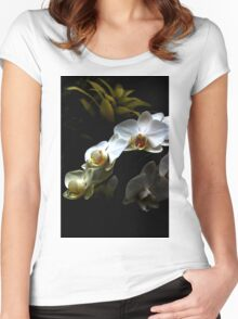 White orchid - Phalaenopsis Women's Fitted Scoop T-Shirt