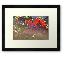FATE Framed Print