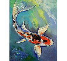 Showa Butterfly Koi Photographic Print