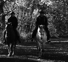 Autumn Stroll by pix-elation