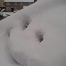 smiley snow !  by nutchip