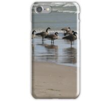 Geese on the beach at Presqu'Ile Provincial Park, Ontario iPhone Case/Skin