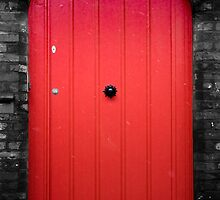 Red door by cactuspink