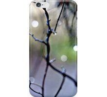 away with the fairies - iPhone case iPhone Case/Skin