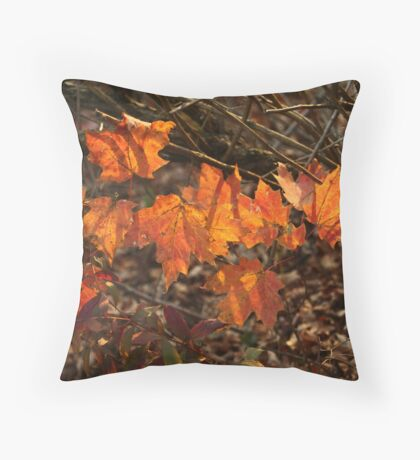 The Transparency of Fall Throw Pillow