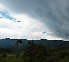Approaching storm, Sandfly, Tasmania by Odille Esmonde-Morgan