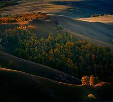 Autumn Grassland by Jason Pang, FAPS FADPA