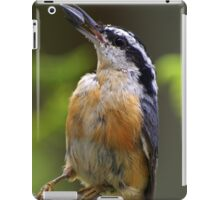 Bird With Sunflower Seed iPad Case/Skin