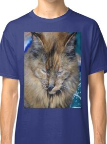 Tortes Shell Cat Has Mark Of The Paw Classic T-Shirt