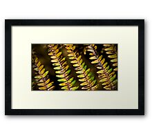 Autumnal Fern Framed Print