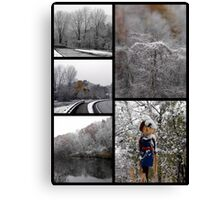The First Snow Of The Season Canvas Print