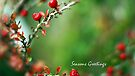 A Very Berry Christmas ... by Gregoria  Gregoriou Crowe