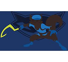 Sly Cooper (Sunset Shores) Photographic Print