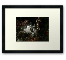 Leftovers ! Framed Print